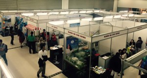 Best of the Best in Cebu's Property Scene Converge in the City's First Property Expo.
