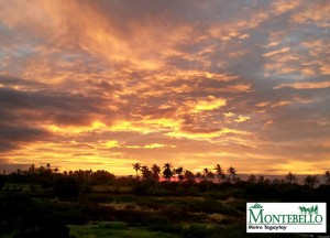 Montebello sunset view from clubhouse