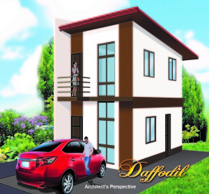Photo above shows an artist's perspective of one of the model houses in RCD ROYALE HOMES in TUY, BATANGAS.